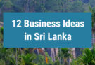 12 business ideas in Sri Lanka