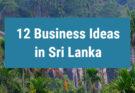 12 business ideas in Sri Lanka