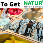 how to get naturals ice cream franchise